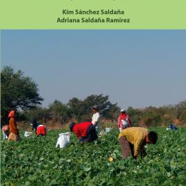 Morelos como destino y origen de trabajadores agrícolas migrantes (2010-2014)