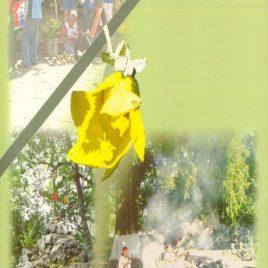 Las plantas, compañeras de siempre: la experiencia Morelos