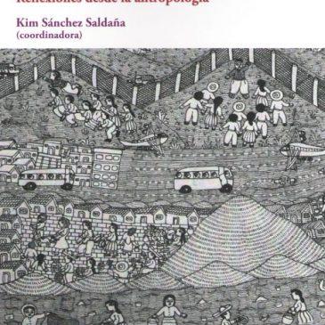 Diversidad cultural, territorios en disputa y procesos de subordinación.Reflexiones desde la Antropología (ePub)