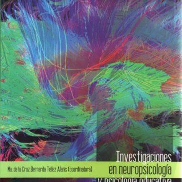 Investigaciones en neuropsicología y psicología educativa (ePub)