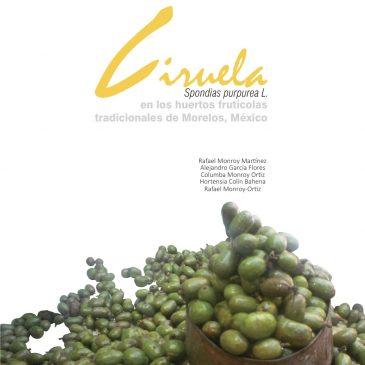 Ciruela Spondias purpurea L. en los huertos frutícolas tradicionales de Morelos